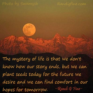Meaningful Life Quotes Prepossessing Desired Future Picture Quote  Randi Gfine